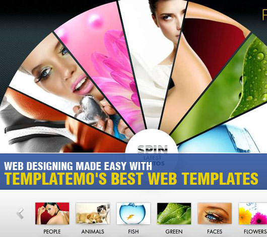 Web Designing Made Easy with Templatemo's Best Web Templates
