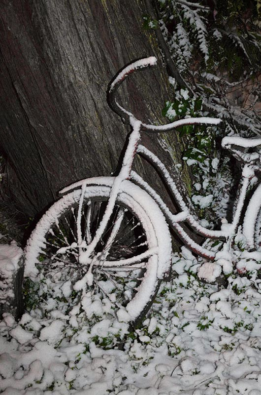 Snow on Bicycle in a Garden