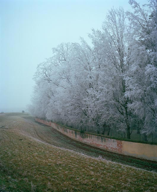 Take a Pleasure in this Winter With Winter Season Photography