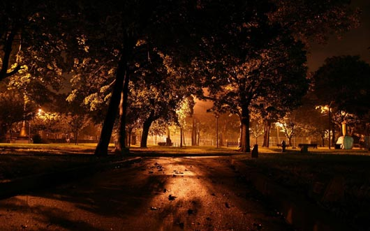 The park at night