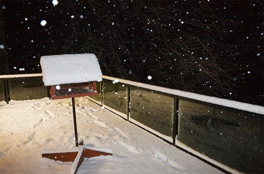 Winter Snowfall at Night on the Photographer's Deck