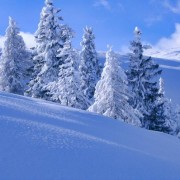Save More Memories in This Cheerful Season To See These Winter Photos-1