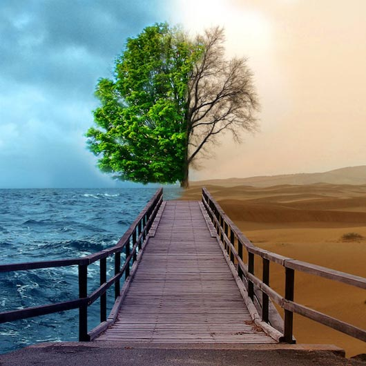 2 sides of Nature