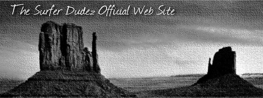 The Surfer Dudez Website Banner
