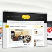 WordPress Templates from ThemeFuse - Giveaway Winner Announcement