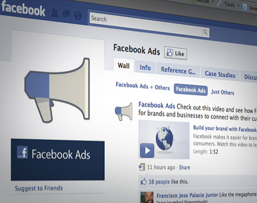 Main look and Feel facebook ads
