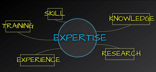 Have Expertise About Work