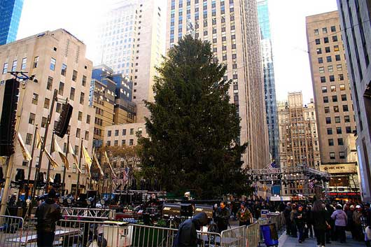 Preparations For The Tree Lighting.