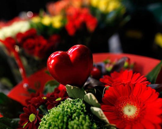 Flowers for all my members