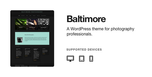 Baltimore WordPress Photography Theme