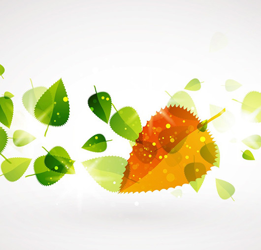 Abstract Green Pattern Vector Background
