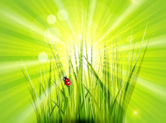 Free Green vector Background
