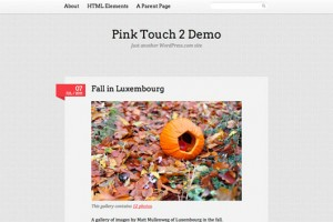 Pink Touch 2