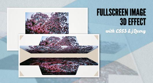 FULLSCREEN IMAGE 3D EFFECT WITH CSS3 AND JQUERY