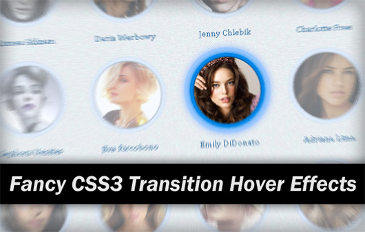 Fancy Hover Effects with CSS3 Transitions