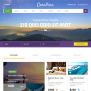 Best WordPress Themes for List, Offer of the Day