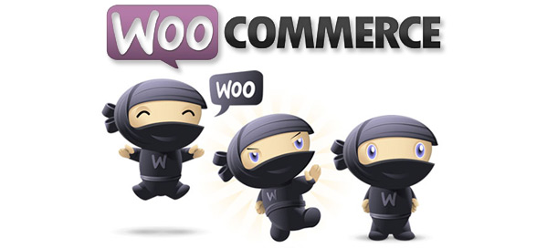 A Beginner's Guide to WooCommerce: Why, How & More
