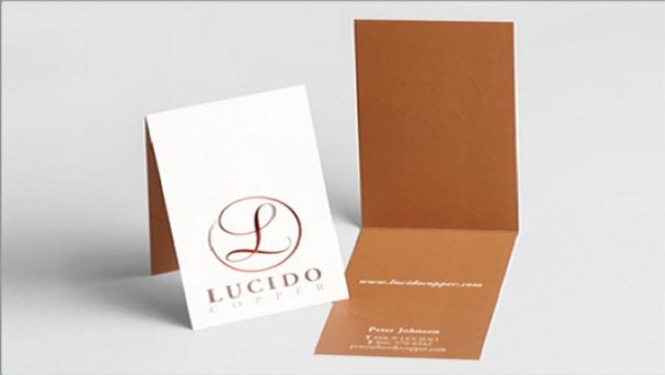 Lucido Business Card