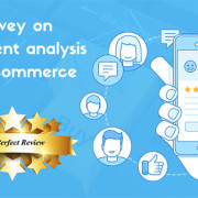 Survey on Sentiment analysis on E-commerce