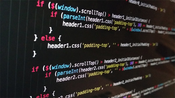research the credentials of the web developer